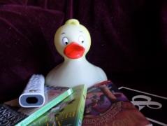 Penske Rubber Ducky
