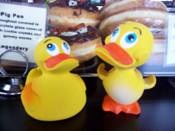 Rubber Ducky Copywriter's Rubber Ducky Flock
