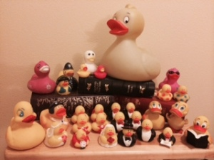 Rubber Ducky's Flock 2014