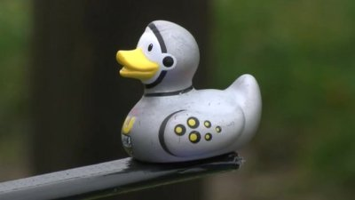 Astroduck rubber ducky goes into space