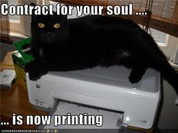 LOLcat - contract for soul