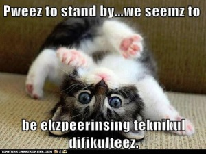 LOLcat please to stand by