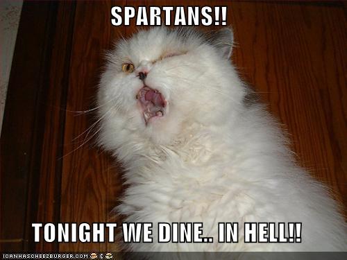 lolcat-spartans