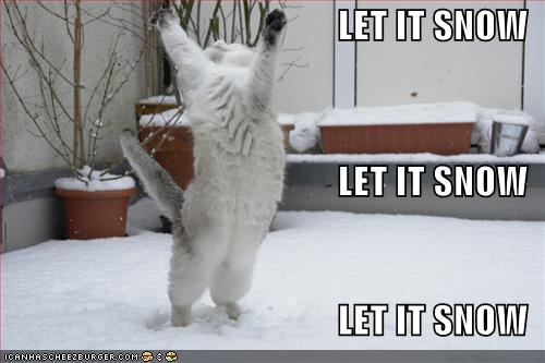 let-it-snow-lolcat