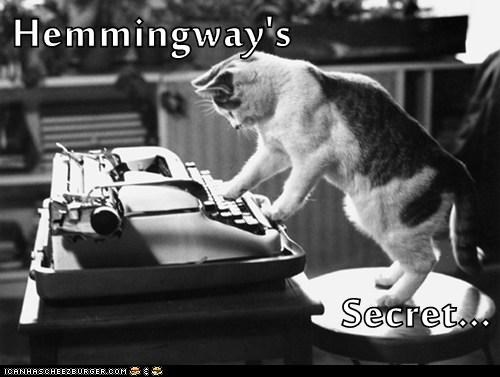 Hemingway Lolcat